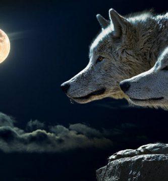 lobo significado espiritual