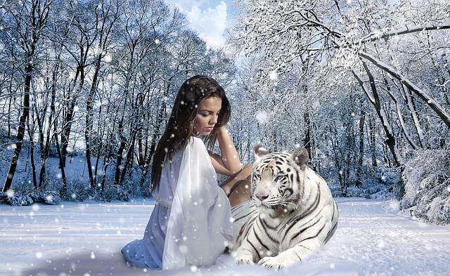 significado espiritual del tigre
