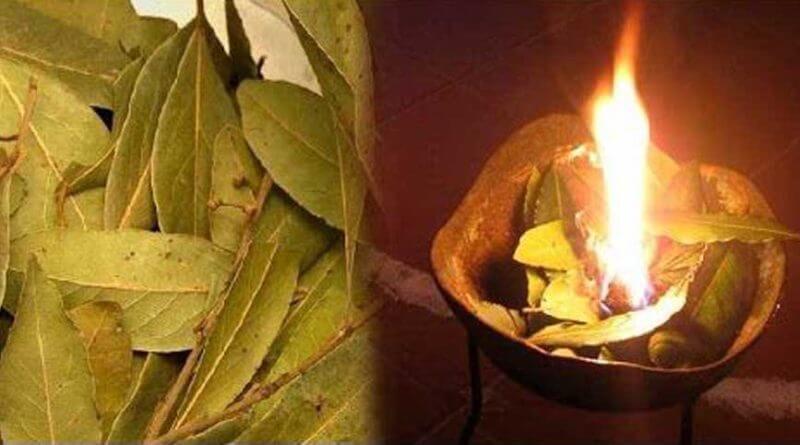 para que sirve quemar laurel